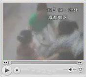 地动山摇 浓烟滚滚<br>DV拍摄地震发生瞬间