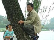 """游客爬上西湖边一棵柳树""""登高赏景"""""""