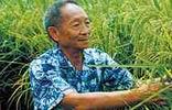 """&nbsp;&nbsp;&nbsp;&nbsp;&nbsp;袁隆平,中国工程院院士,我国当代杰出的农业科学家,享誉世界的""""杂交水稻之父""""。<br>&nbsp;&nbsp;&nbsp;&nbsp;&nbsp;他工作50多年来所取得的科研成果使我国杂交水稻研究及应用领域领先世界水平,不仅解决了中国粮食自给难题,也为世界粮食安全做出了杰出贡献。"""