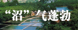<center>广西新能源建设新农村</center>