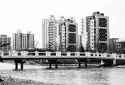 中国第一宗土地公开拍卖