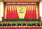 完善社会主义市场经济体制