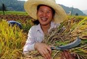 8亿农民免征农业税