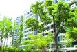 [视频]北京:4万套保障性住房将上市
